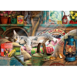 Snoozing in the Shed - Steve Read (1000) Gibsons
