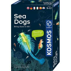 KOSMOS, Sea Dogs